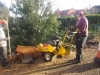 Stump Removal Brentwood