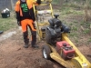 Stump Grinding Essex
