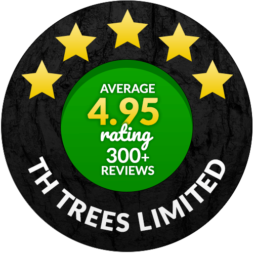 4.95 star rated Tree Surgeon