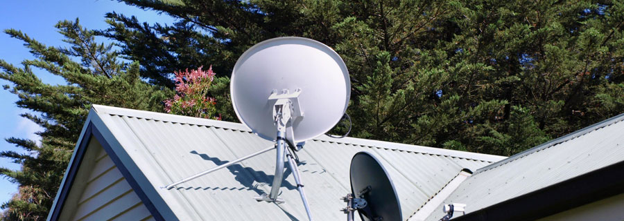 Do Trees Block Satellite & TV Signals & what can I do About it?